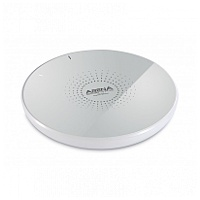 ARENA Scientific Icey QI Charging Pad