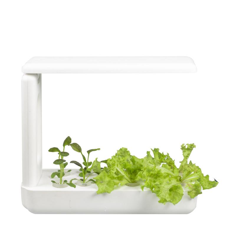 Vegebox 室內水耕種植箱 [3款]