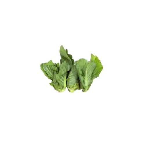 泰國椰菜苗 [約200g]