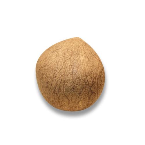 印度椰子 [約500g]