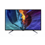 """Philips 55"""" 4K HDR Android 智能LED電視 (55PUD6172)"""