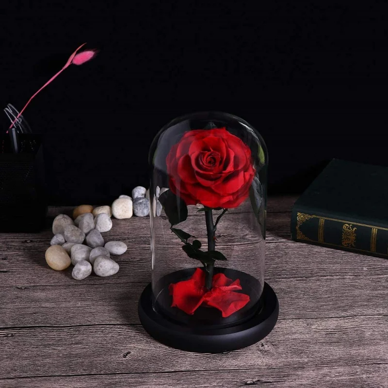 LE PETIT PRINCE - The Red Rose 小王子的永恆紅玫瑰 [22cm]【母親節精選】