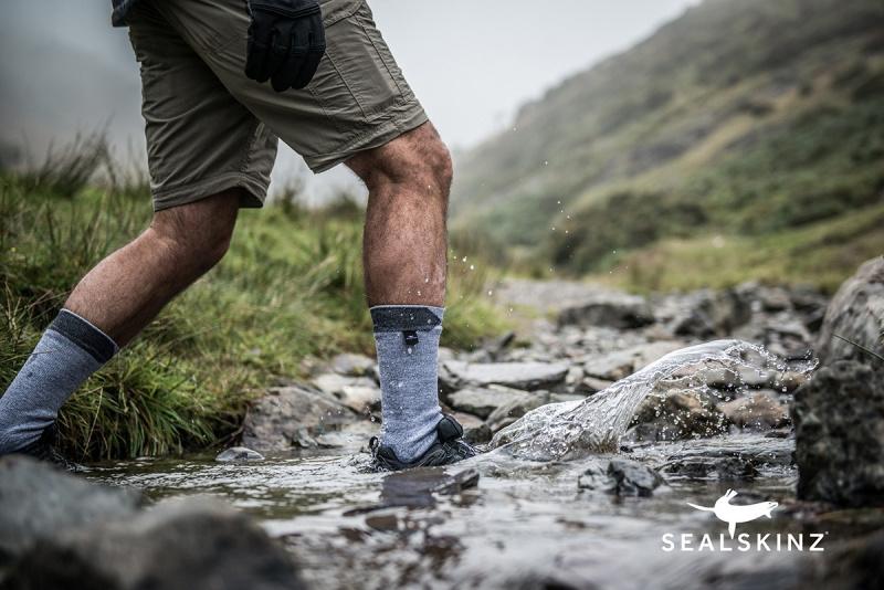 Sealskinz Walking Thin Ankle 全天候防水襪 (中低筒) [3色] [3尺寸]
