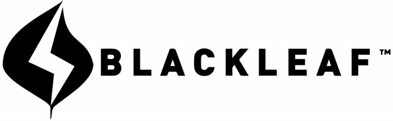 台灣 BlackLeaf Relaxs S1 深層肌肉按摩器(隨機附送FLEXIN 男性三合一沐浴乳一支)