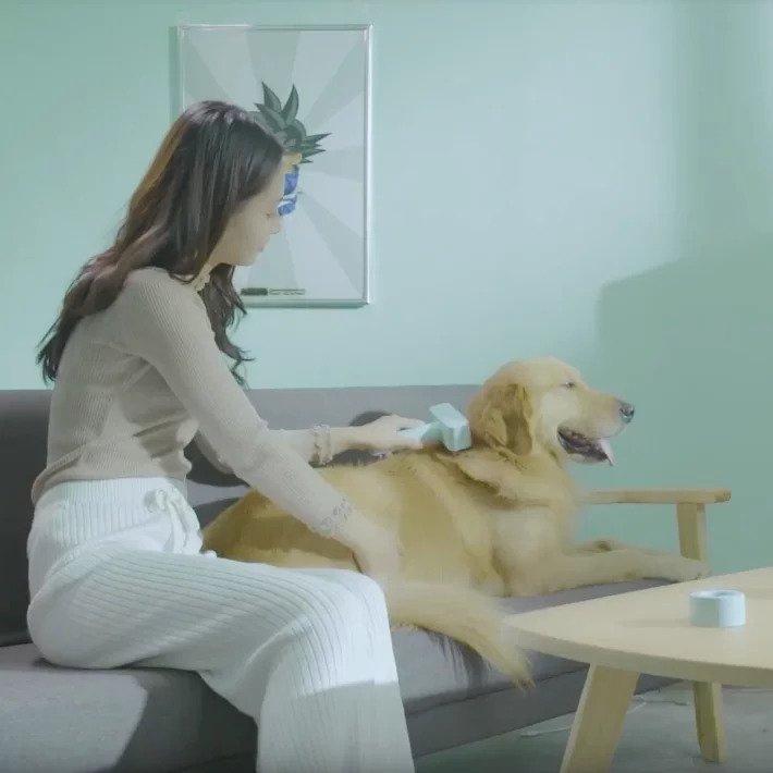 Kcomb 電動寵物吸毛梳 [2色]