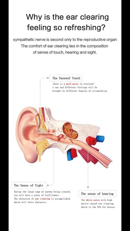[行貨1年保用] Bebird 智能採耳 B1 [3色]