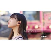 AVIOT TE-D01d 真‧無線藍牙耳機 日系調音+重低音再加強