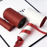 [香港行貨] 日本 Lowra rouge 紅白經典系列電風筒 [2色]