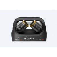[工商免運] [SONY原廠保養] PCM-D10 線性 PCM 錄音機 D 系列