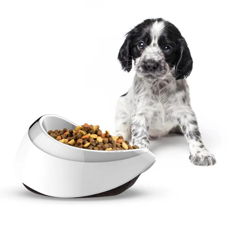 Petble SmartBowl 寵物智能餵食碗