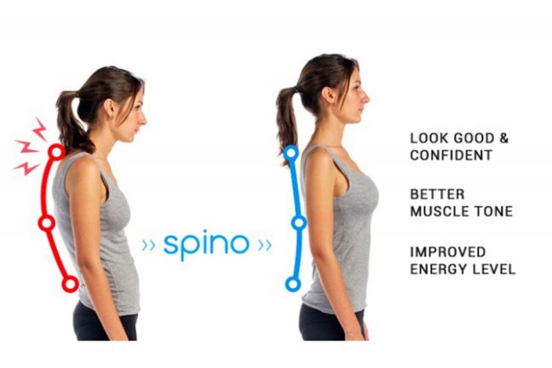 SPINO - 輕便坐姿矯正器 (標準版)
