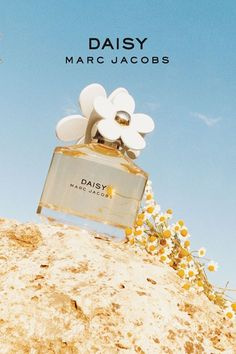 Marc Jacobs Daisy EDT 雛菊女性淡香水 100ml