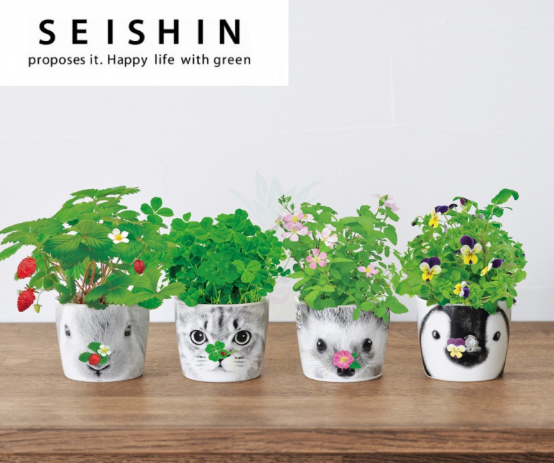 Seishin Hana x Animal 陶瓷杯系列