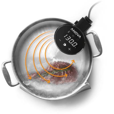 Anova Precision Cooker 2019 智能低溫慢煮機