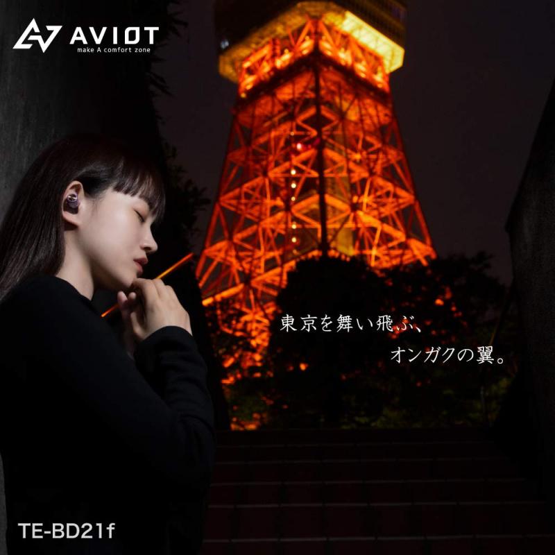 AVIOT TE-D21f