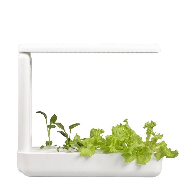 VEGEBOX™廚房-室內水培花園