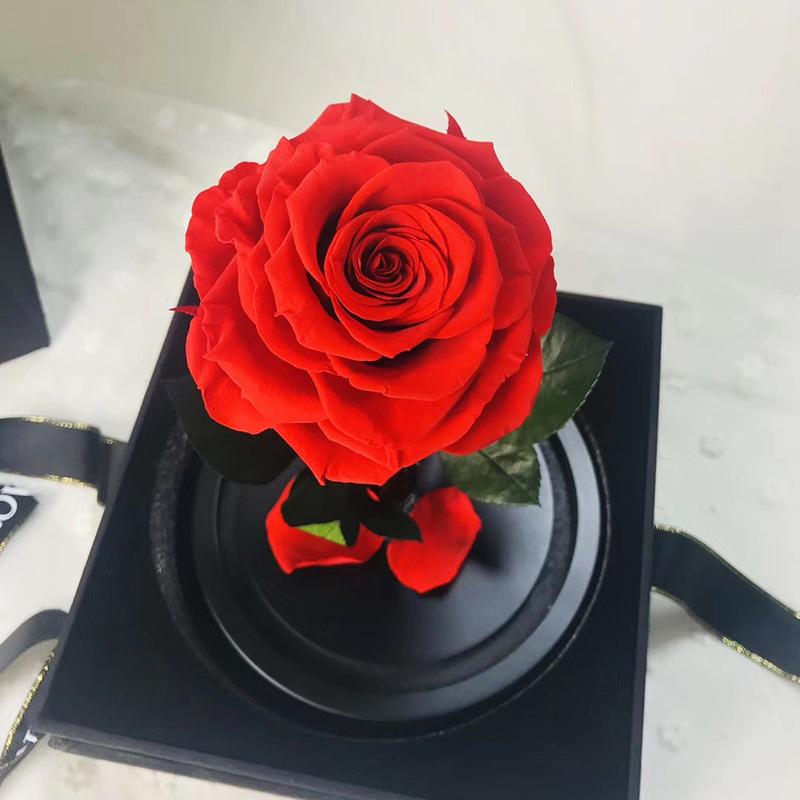 小王子永生玫瑰花