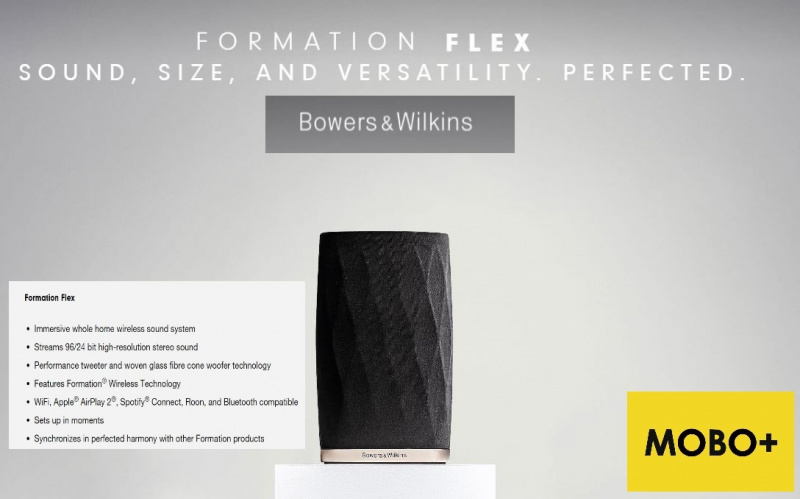 Bowers & Wilkins Formation Flex 無線喇叭