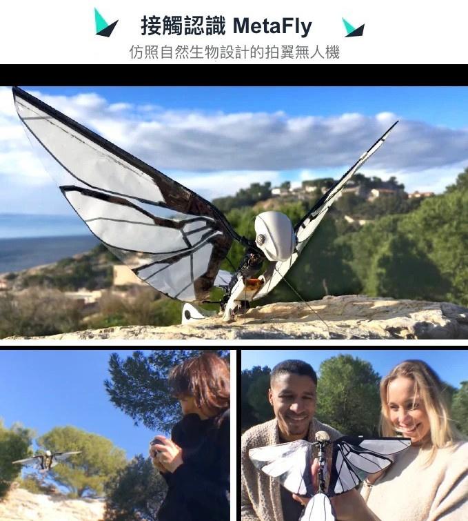 法國 MetaFly 遙控飛行仿生鳥