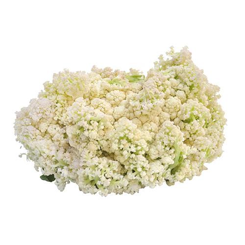 福建椰菜花 [約1000g]