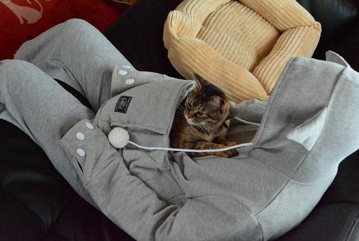 貓狗袋鼠袋寵物衛衣