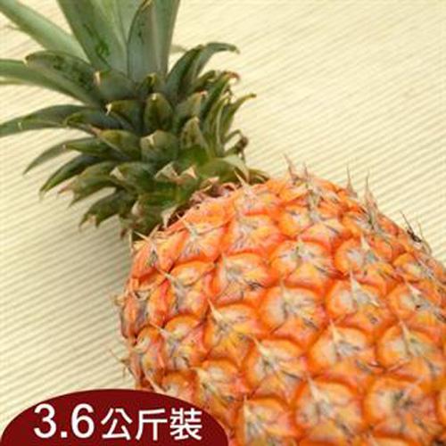台灣新鮮採摘直送 - 好農嚴選關廟金鑽鳳梨(3.6公斤)