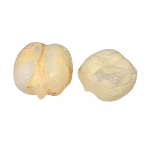 有殼海底椰 [1包]