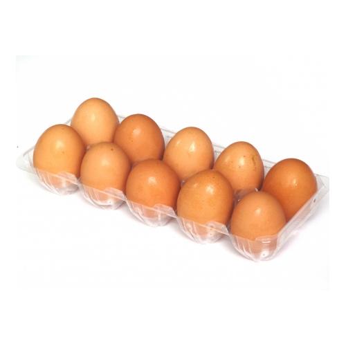 日本啡蛋 [10隻/排]