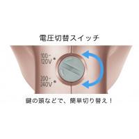 ⭐大特惠⭐日本Panasonic EH-NA59-PN 納米負離子香檳色保濕護髮風筒