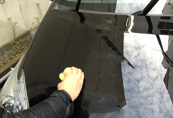 SOFT99 極致蠟 淺色・雲母&金屬色車漆用