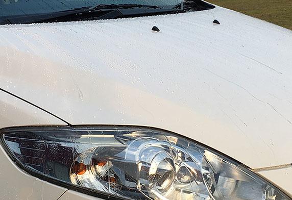 SOFT99 激防水固體臘 白色車漆用