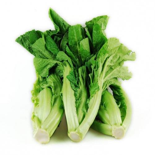 水東芥菜[約500g]