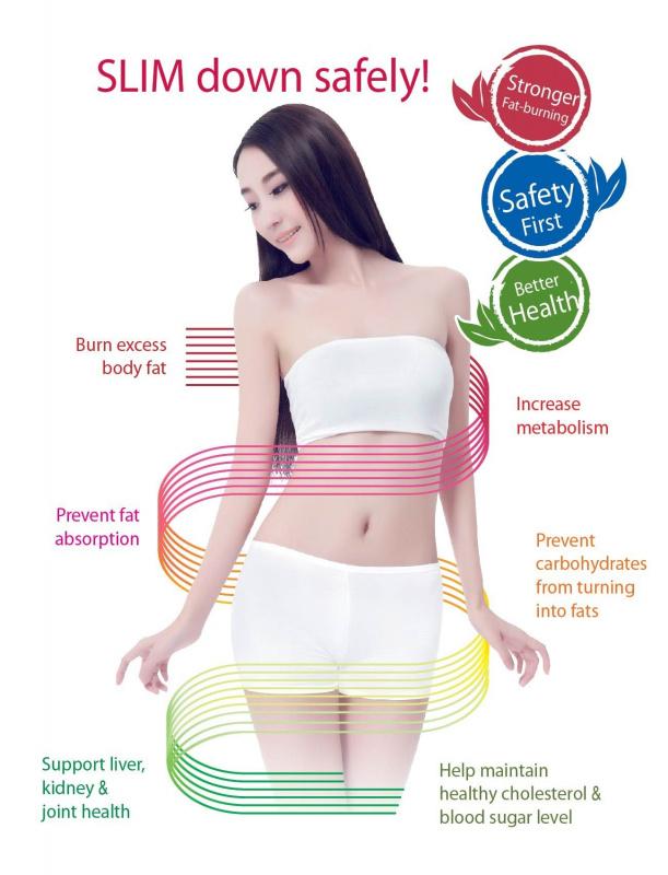 燃脂瘦_強效版(60粒膠囊) 新加坡原裝進口 減肥瘦身燃脂安全健康美體塑身天然植物膠囊