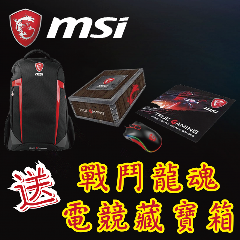 "MSI 15.6"" GL65 黑豹系列電競筆電 (10SFK RTX2070)"