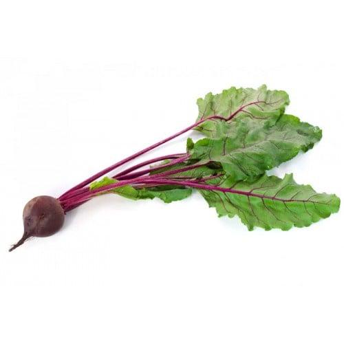 紅菜頭 [約1000-1200g]