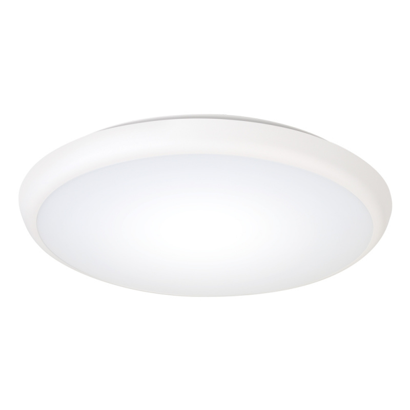 天花燈 18W (可調光)