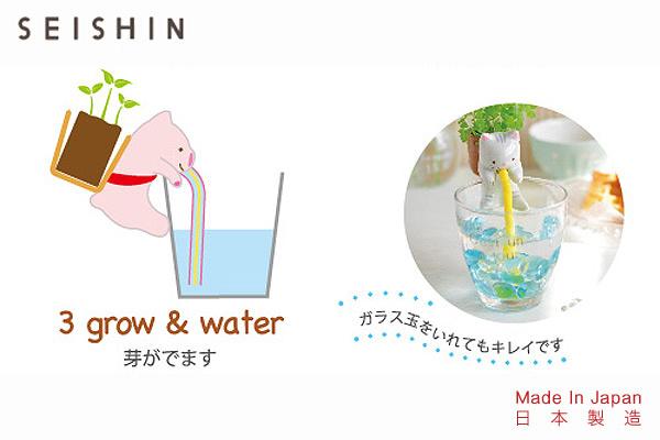 CHUPPON海洋生物種植套裝 (小海豚/四葉草)|日本製造