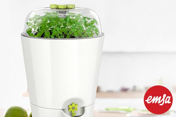EMSA|迷你溫室香草種植套裝 (白/1.2L)|德國品牌
