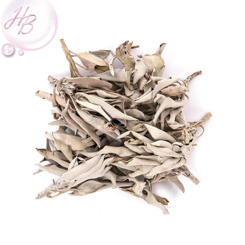 ORA 美國白鼠尾草(95克)