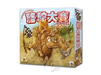 Camel Up 駱駝大賽