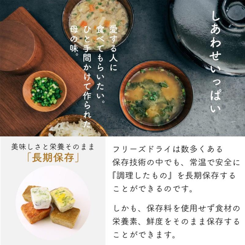 日本【新食代コスモス】無添加 增量即食豚汁味噌湯 14g【市集世界 - 日本市集】