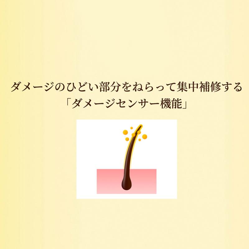日版 肌美精Himawari 有機向日葵精油柔順修護洗髪水 500ml【市集世界 - 日本市集】