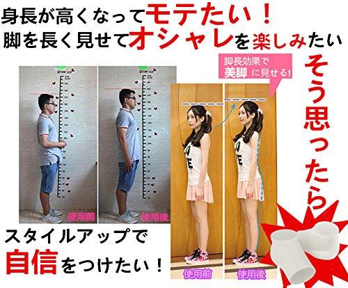 CASE STATION 日本隱形增高墊 增高2cm鞋墊隱形 熊貓豬