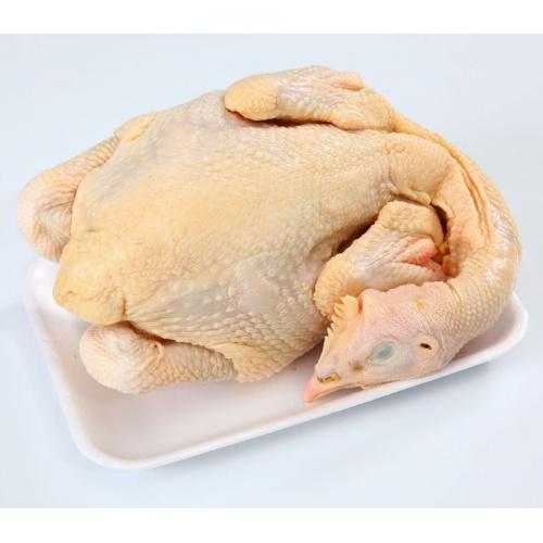 冰鮮中雞 (1隻)(約1.3kg)