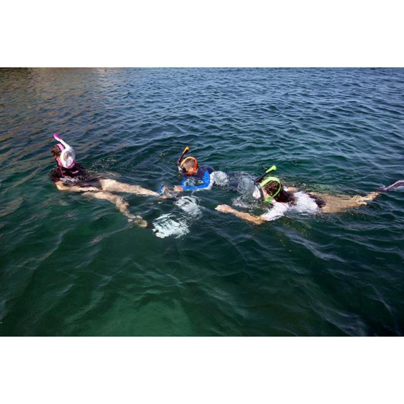 Unica 成人全面罩式浮潛面鏡 - 黑/青檸