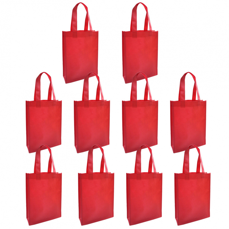 不織布禮物環保小袋 10個廠價特惠裝 多用途包裝用品 SNB003