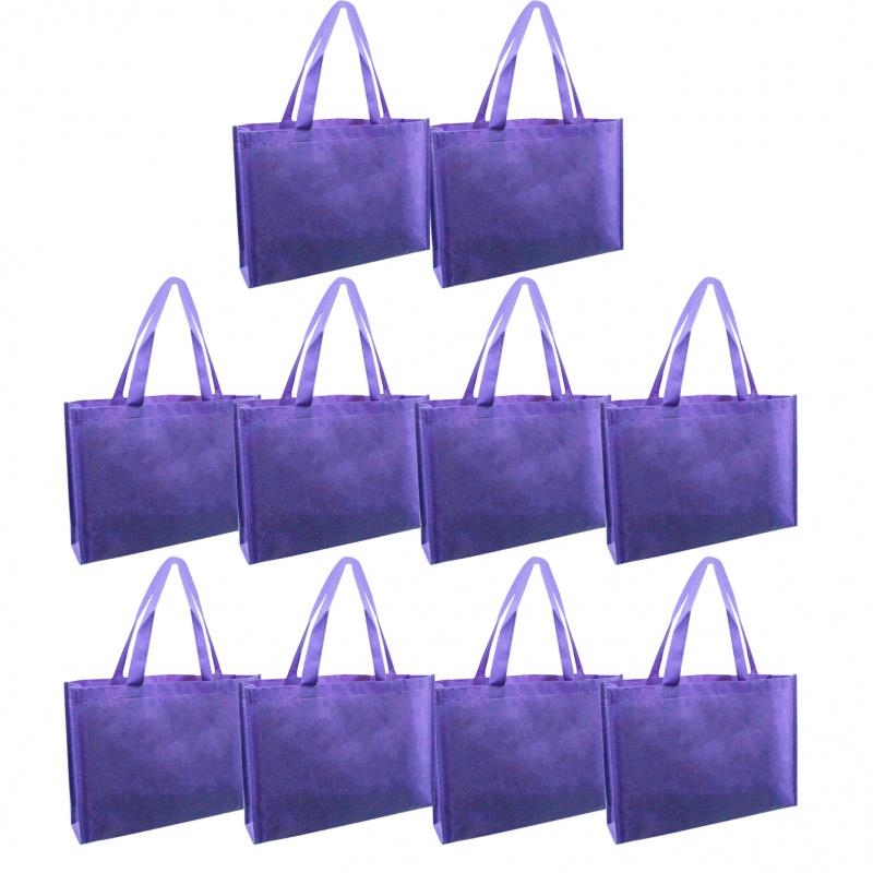 不織布禮物中袋 10個廠價特惠裝 多用途包裝用品 SNB004