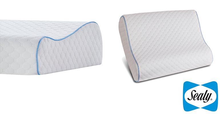 Sealy Memory Foam 記憶枕 (白色)