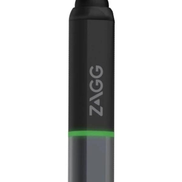 ZAGG Pro Stylus iPad 雙筆尖觸控筆( for Apple iPad)