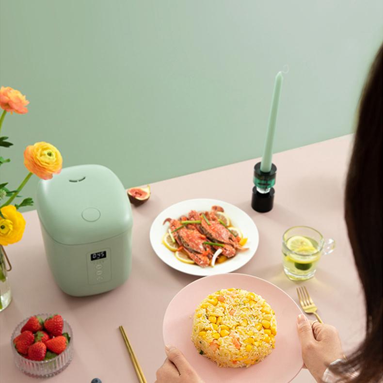 生活元素迷你家用電飯煲 1.2L F55 - 萬用 電湯煲 迷你煮食鍋 電飯煲